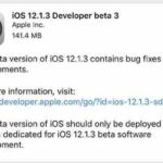 Apple pushes iOS 12.1.3 beta3 developer preview: fix bug