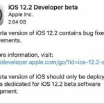 iOS 12.2 first developer preview beta1 update.