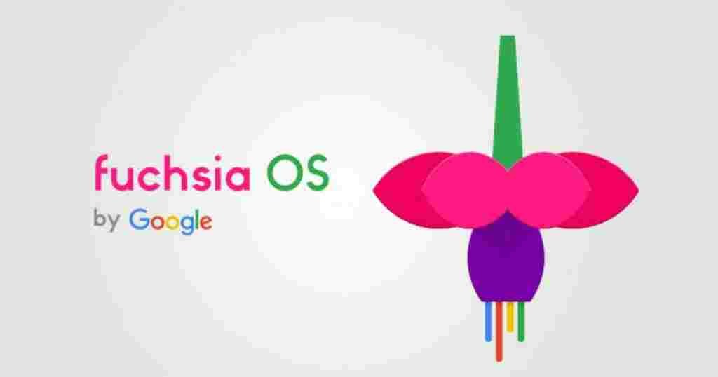 Google opens the real Fuchsia website and also provides